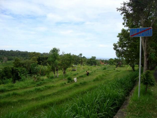 Выезд из Амлапуры. Бали