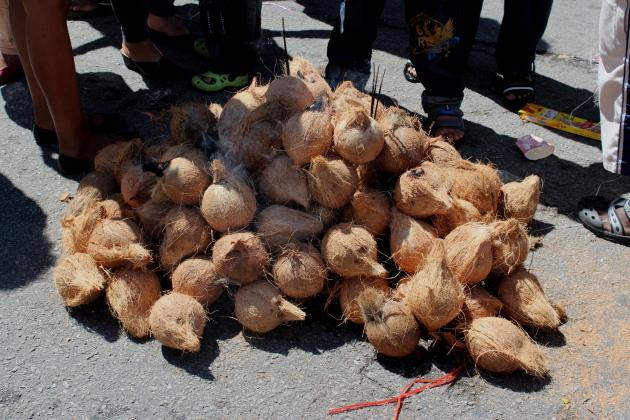 Подготовленные в жертву кокосы. Тайпусам. Пенанг