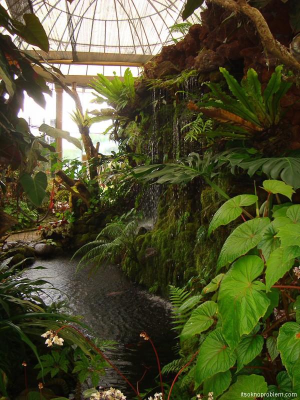 Ботанический сад Бедугул. Сад орхидей