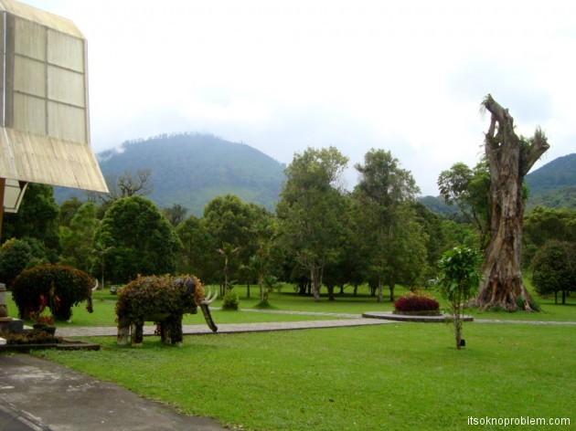 Ботанический сад Бедугул. Слоник