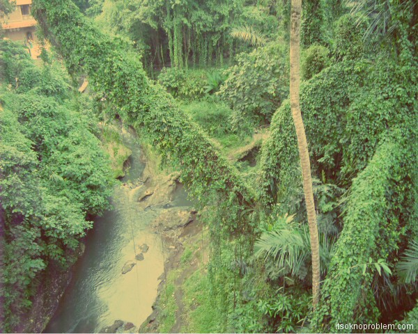 Реки в Убуде. Бали. Индонезия