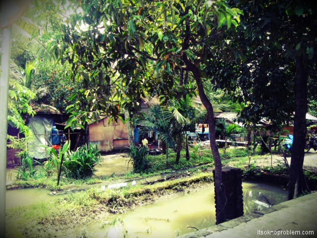 Поездка в Убуд. Кинтамани. Бали,Индонезия