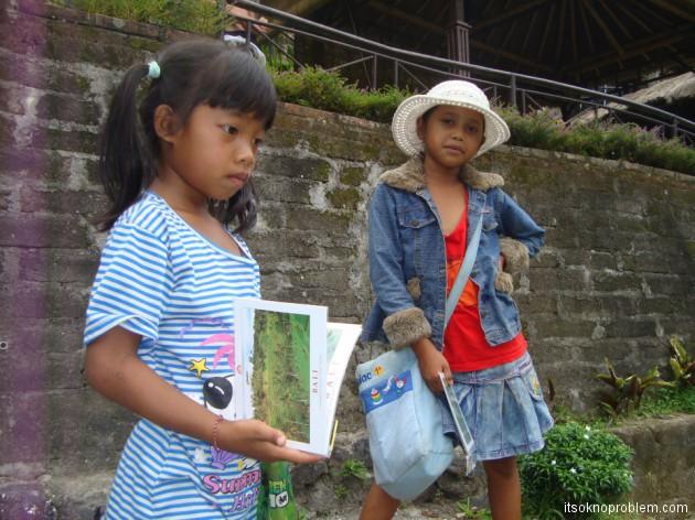 Убуд, кинтамани. Бали, Индонезия