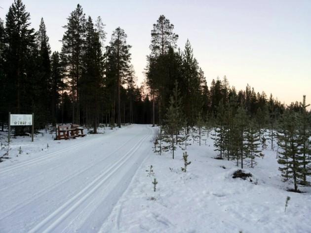 Навстречу зиме! К снегам в Альпы и в Финляндию