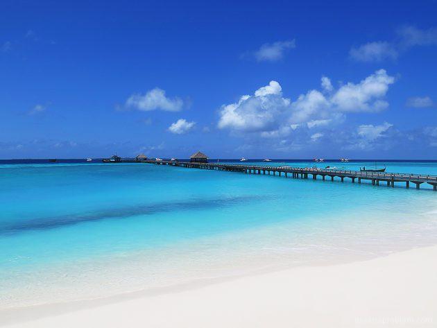 150 дней в раю или как я работала инструктором на Мальдивах