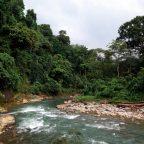На Суматру за бабочками, орангутанами и дайвингом. Часть 1